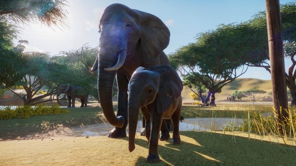لعبة planet zoo محاكي حديقة الحيوانات للويندوز